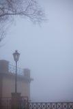 Árbol y una luz de calle solitaria imagen de archivo