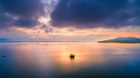 Árboles aéreos de la foto en el medio de la luz del sol hermosa del lago fotografía de archivo libre de regalías