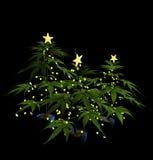 Árboles adornados de la marijuana de la Navidad Fotos de archivo