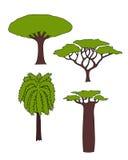 Árboles africanos Imágenes de archivo libres de regalías