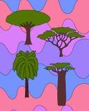 Árboles africanos fijados Foto de archivo libre de regalías