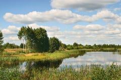 Árboles, agua Foto de archivo libre de regalías