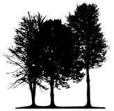 Árboles aislados ilustración del vector