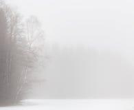 Árboles aislados del álamo temblón en las montañas Imágenes de archivo libres de regalías