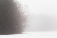 Árboles aislados del álamo temblón en las montañas Fotografía de archivo