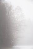 Árboles aislados del álamo temblón en las montañas Imagen de archivo libre de regalías