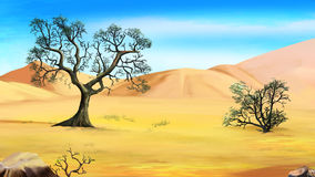 Árboles al borde del desierto en un día de verano
