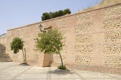 Árboles al lado de la pared de piedra Imágenes de archivo libres de regalías