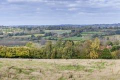 Árboles amarillos del otoño en campo inglés Fotografía de archivo libre de regalías