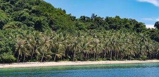 Árboles blancos de Sandy Beaches Lined With Coconut en las Filipinas Foto de archivo