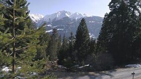 Árboles a cámara lenta Mountain View 4k aéreo de la antena 4kBetween del invierno de las montañas de Backcountry de la snowboard almacen de video