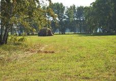 Árboles, campo, pila del heno en la distancia en un día de verano soleado Imagen de archivo