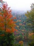 Árboles coloridos de la caída que pasan por alto el pequeño lago con la niebla que rueda sobre la montaña Imágenes de archivo libres de regalías