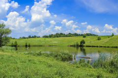 Árboles coloridos sobre el lago con la reflexión Imágenes de archivo libres de regalías
