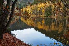 Árboles con el espejo de las hojas de otoño sobre la superficie de la charca Foto de archivo