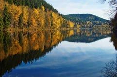 Árboles con el espejo de las hojas de otoño sobre la superficie de la charca Imagenes de archivo
