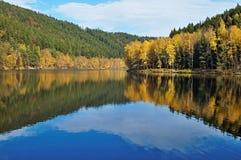 Árboles con el espejo del oro de las hojas de otoño sobre la superficie de la charca Fotografía de archivo libre de regalías