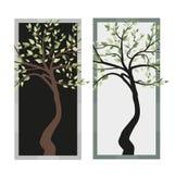 Árboles con las hojas Imagen de archivo libre de regalías
