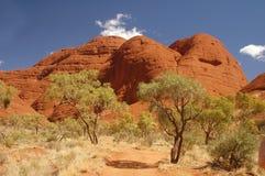Árboles con las rocas rojas en Australia Imagen de archivo libre de regalías
