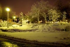 Árboles congelados debajo de la nieve en la noche imagen de archivo libre de regalías