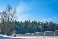 Árboles congelados el día soleado Fotografía de archivo libre de regalías