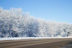 Árboles cubiertos con la nieve blanca en el borde de la carretera Imagenes de archivo