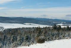 Árboles cubiertos con nieve en las montañas de un invierno Imagenes de archivo