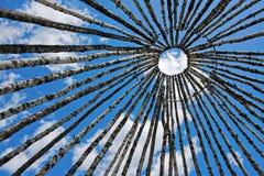 Árboles de abedul en un círculo en el cielo Imagenes de archivo