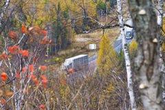 Árboles de abedul que pasan por alto la carretera de Transcanada de la ciudad de Imagenes de archivo