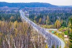Árboles de abedul que pasan por alto la carretera de Transcanada de la ciudad de Foto de archivo libre de regalías