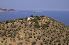 Árboles de aceitunas que pasan por alto el mar en Paros Imagenes de archivo