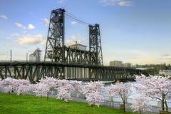 Árboles de acero Portland Oregon del flor de cereza del puente Foto de archivo libre de regalías