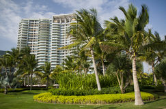 Árboles de coco y edificio alto por la playa Imágenes de archivo libres de regalías