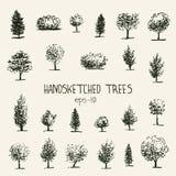 Árboles de Handsketched Fotografía de archivo libre de regalías