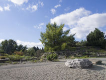 Árboles de hoja perenne con las rocas en un jardín Fotos de archivo