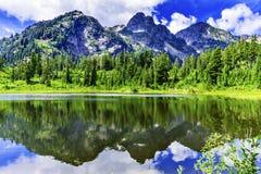 Árboles de hoja perenne Washington los E.E.U.U. del lago picture Imagen de archivo libre de regalías