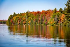 Árboles de la caída con el lago imágenes de archivo libres de regalías