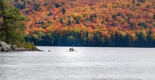 Árboles de la caída con el lago Foto de archivo