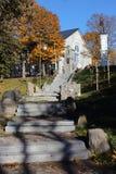 Árboles de la ciudad en último fondo del otoño Imagen de archivo libre de regalías