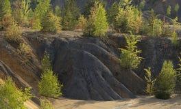 Árboles de la primavera en las colinas de la arena en la mina abandonada Fotografía de archivo