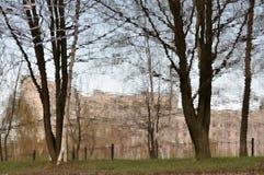 Árboles de la primavera sin las hojas Fotografía de archivo