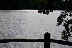 Árboles de la puesta del sol de la playa del río del agua de la reflexión de la playa Imágenes de archivo libres de regalías