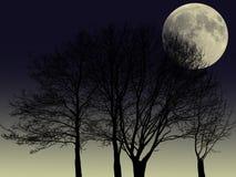 Árboles de la silueta y el fondo de la Luna Llena Ilustración del Vector