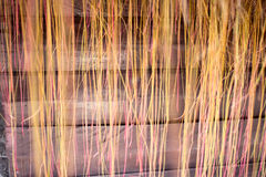 Árboles de las cortinas Imágenes de archivo libres de regalías