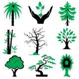 Árboles de los iconos