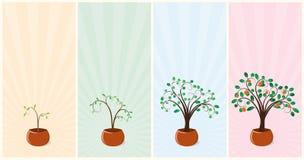 Árboles de mandarín stock de ilustración