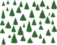 Árboles de navidad Imagenes de archivo