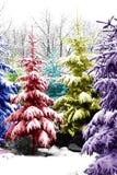 Árboles de navidad Colorized Fotografía de archivo libre de regalías