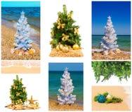 Árboles de navidad con las decoraciones, sistema Imágenes de archivo libres de regalías