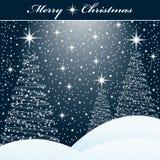 Árboles de Navidad en la nieve Imágenes de archivo libres de regalías